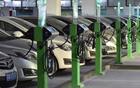 """新能源汽车穿越阵痛:""""没有金,也没有银"""""""