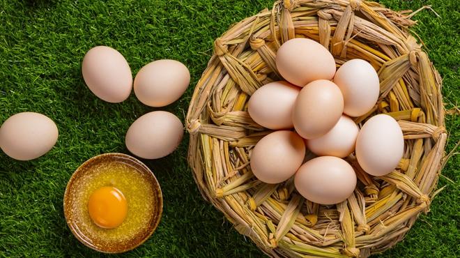 辨别鸡蛋是否新鲜,只需五招