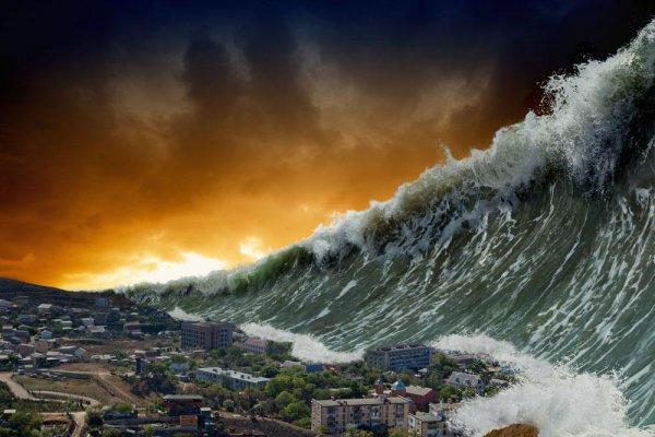 100来海啸夺走全球26万生命:海啸预警发布后,这十件事要记住